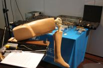 Workshop-Oxford-Knee-Model